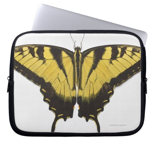 Western Tiger Swallowtail Butterfly Computer Sleeve
