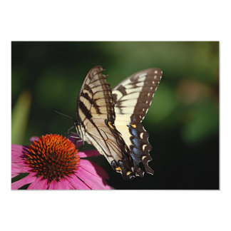 Western Tiger Swallowtail Butterfly Invitation