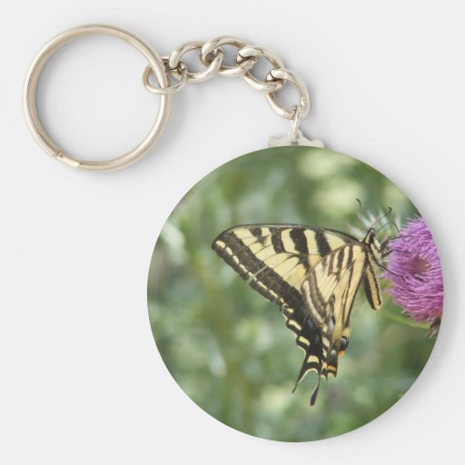 Western Tiger Swallowtail Butterfly Keychains