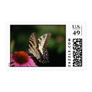 Western Tiger Swallowtail Butterfly Stamp