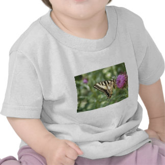 Western Tiger Swallowtail Butterfly Tshirts