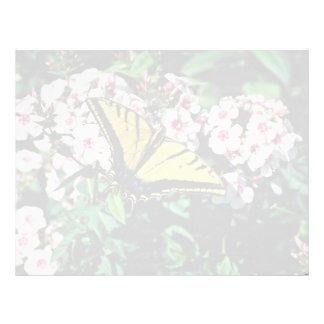 Western tiger swallowtail on white phlox top  flow letterhead template