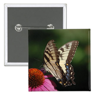 Western Tiger Swallowtail Square Pin