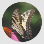 Western Tiger Swallowtail Sticker