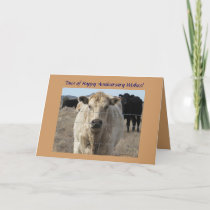 Western Wedding Anniversary Cattle Herd Card