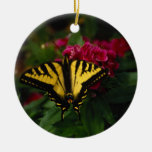 Western Yellow Swallowtail Ornaments