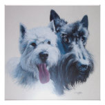 Westie and Scottie Dogs Canvas Print Poster