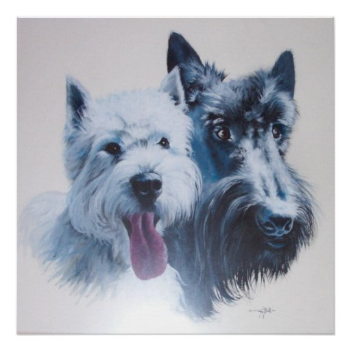 Westie and Scottie Dogs Canvas Print