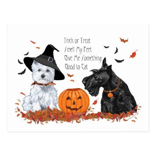 Westie and Scottie Halloween Postcards