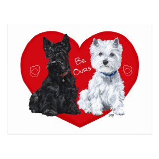 Westie and Scottie Valentine Postcard