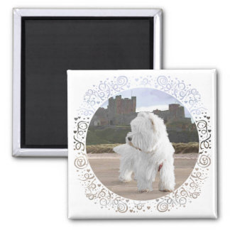 Westie at Bamburgh Castle 2 Inch Square Magnet