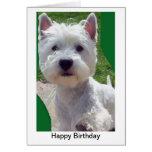 Westie Birthday Card Greetings Card paw up 'Hello'