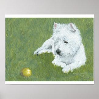 Westie con una bola póster