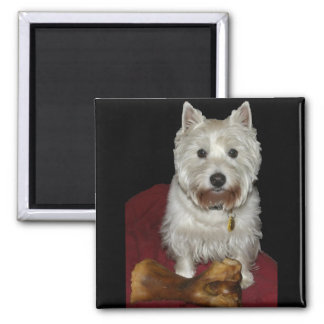 Westie Desi and Lucy 2 Inch Square Magnet