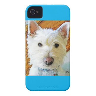 Westie Dog Face, Looking at You Case-Mate iPhone 4 Case