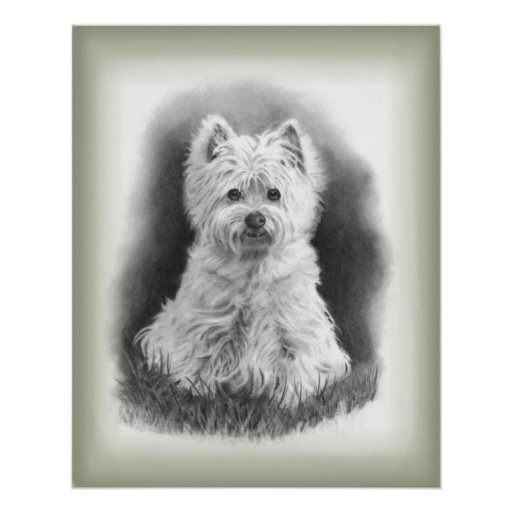 Westie Dog: Realism Pencil Art Poster