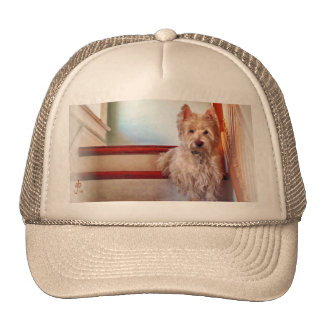 Westie Dog Sitting on the Stairs, Vintage Look Mesh Hats