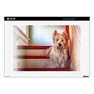 Westie Dog Sitting on the Stairs, Vintage Look Laptop Skins