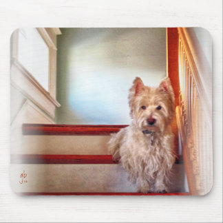 Westie Dog Sitting on the Stairs, Vintage Look Mouse Pad