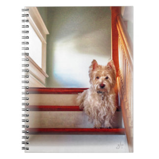 Westie Dog Sitting on the Stairs, Vintage Look Notebook
