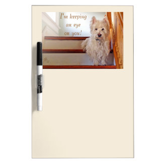 Westie Dog Sitting on the Stairs, Watching You! Dry-Erase Board