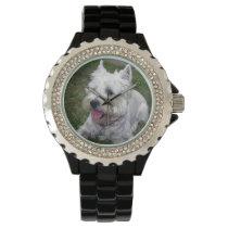 Westie Dog Watch