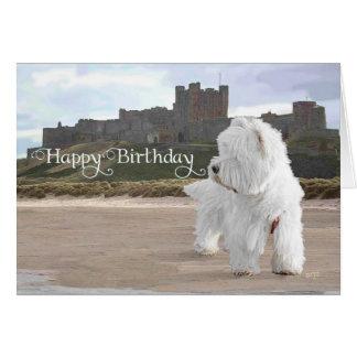 Westie en el castillo de Bamburgh Tarjeta De Felicitación