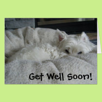 Westie Get Well Soon Photo Greeting Card