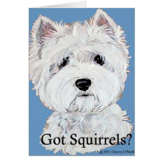 Westie  Got Squirrels? Greeting Cards