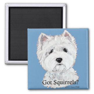 Westie Got Squirrels Refrigerator Magnet
