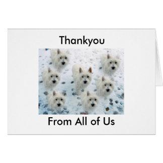Westie gracias para tomar a buen cuidado de nosotr tarjeta pequeña