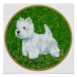 Westie Greengrass Posters