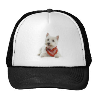 Westie Hat/Cap Trucker Hat