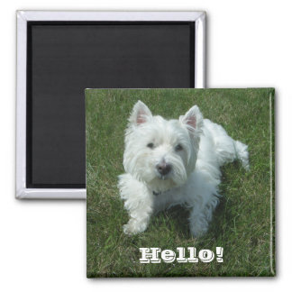 Westie Hello Photo Magnet