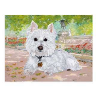 Westie in the Park Postcard