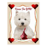 Westie Kisses For You Postcard