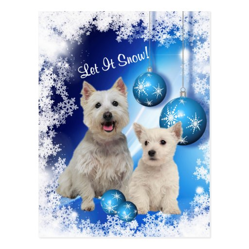 Westie Let It Snow Holiday Greeting Postcard