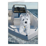 Westie Luv N Life on a Boat Card