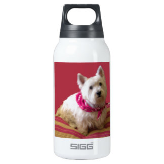 WESTIE ON ROSE INSULATED WATER BOTTLE