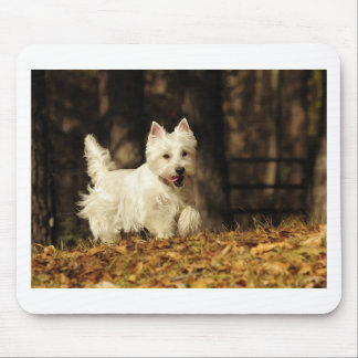 Westie on the move mouse pad