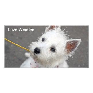 westie photo card