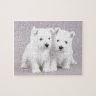 Westie puppies jigsaw puzzle