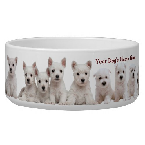 Westie Puppies Waiting Patiently For Their Food Bowl