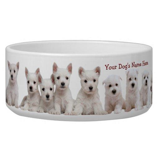 Best Dog Food For Westies Uk