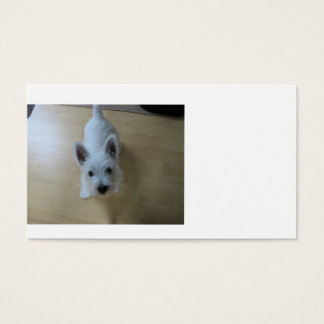 westie Puppy 3.png Business Card