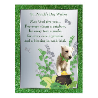 Westie Puppy 3 St Pattys Day Spiritual Message Postcard