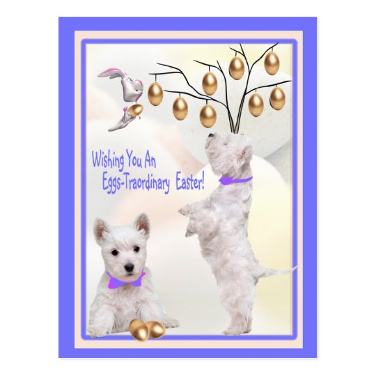Westie Puppy Eggs -Traordinary Easter Wishes Postcard
