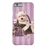 Westie puppy iPhone 6 case