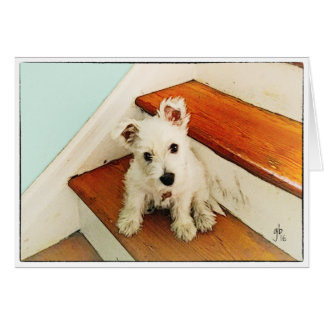 Westie Puppy On Step Thinking Of You Card