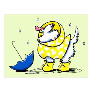 Westie Rainy Day Postcard